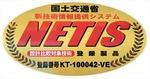 NETIS-KT-100042-VE.jpg